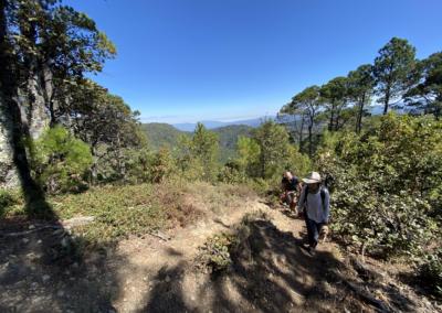 Trek-Oaxaca-Ixtepeji