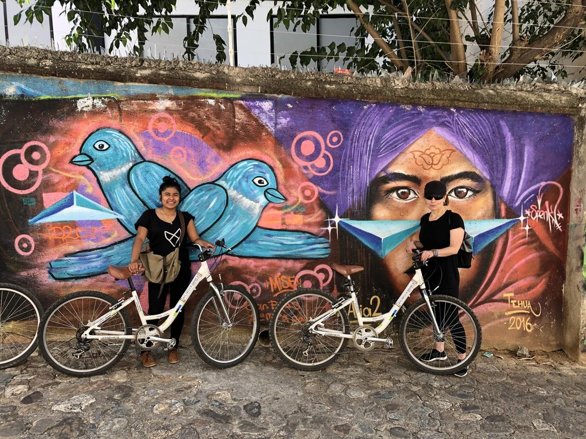 CITY BIKE streetart-bikecover oaxaca mexico