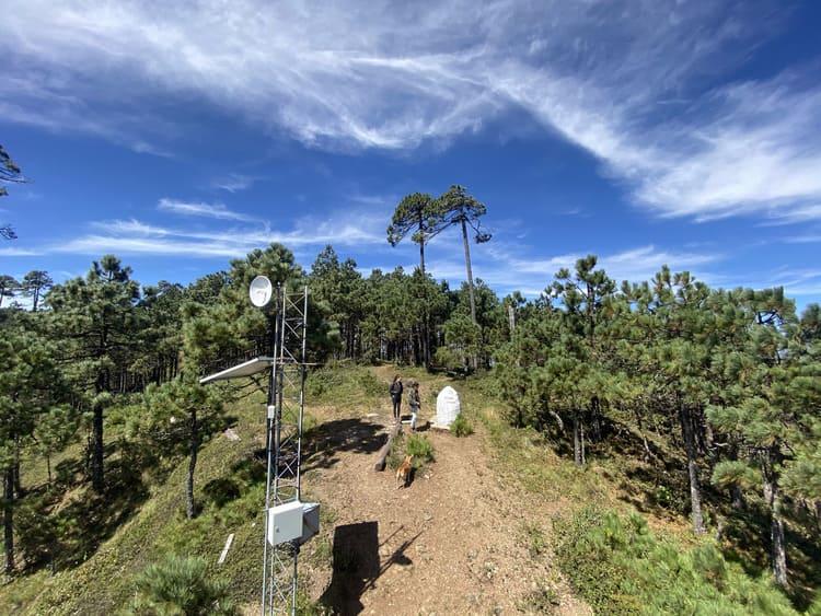 Trek-Ixtepeji-Forest, oaxaca mexico